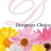Designers Choise