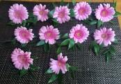 Gerber buttonhole