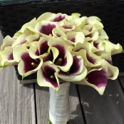 Calla Lillie Brides bouquet
